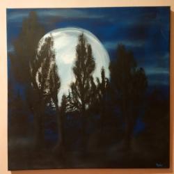 Les za úplňku - 1293