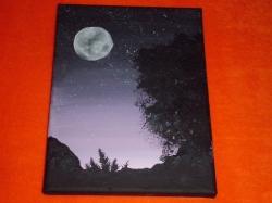 Krajina v noci - prodejce: 1308
