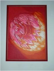 Pohádková medúza - 1309