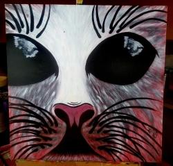Vesmírná Kočka