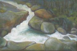 Potok v lese - 1238