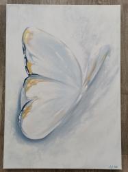 Motýl  - prodejce: 1397