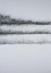 Krajina - kresba - 1402