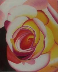 Růže 60x90 - 636