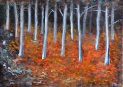 Podzim v bukovém lese