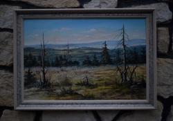Brdy- Tok podzim - 920