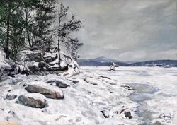 Zimní Doksy - 1446