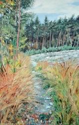 Podzimní cesta - 1446