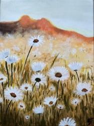 Květinové pole - 1451