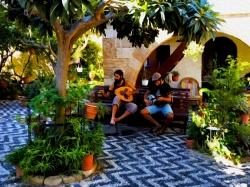 Muzikanti rhodos - prodejce: 1450
