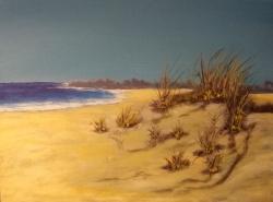 Duny - prodejce: 1455