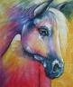 Kůň - 637