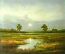 krajina u potoka - 631