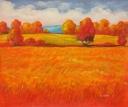sluneční krajina - 631