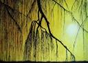 Slnko za záclonou. - 558