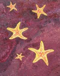Mořské hvězdice