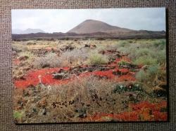 Tajemná Fuerteventura