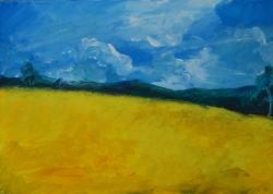 Žluté pole
