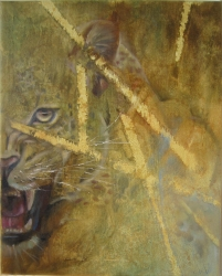 Džungle - 1051