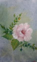 Růžová kytka