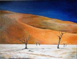 Namib - 1172