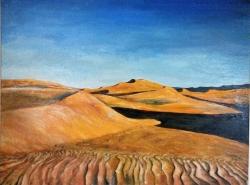 Sahara - 1172