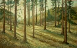 Rozbřesk v lese - 1173