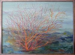 Mořský korál - 1196