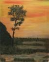 Západ slunce - prodejce: 1211