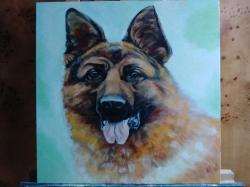 German shepherd - 1194