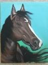 Kůň  - 1218