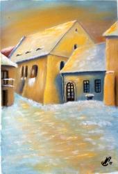 Zadní synagoga Třebíč - 1226
