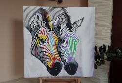 Zebras - 1231