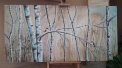 Winter birch - 1231