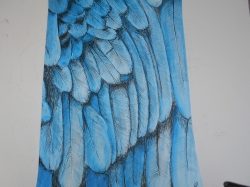 blue feathers - 1248