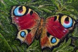 Motýl - 1281